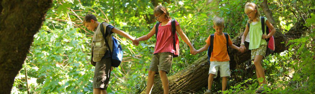 Four children in a forest hold hands and lead each other over a fallen log