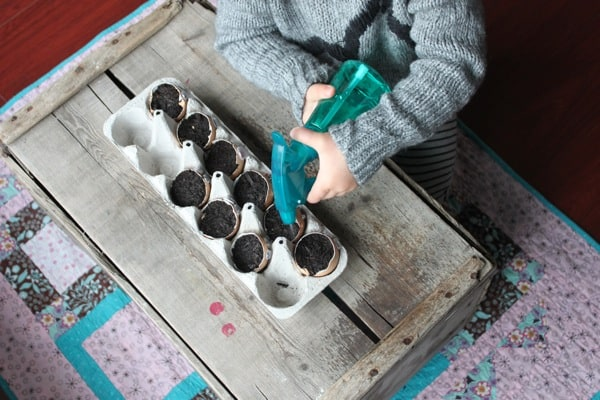 Glue egg shells into egg carton for Easter Themed STEAM Activities