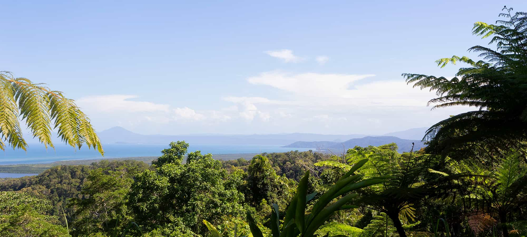 Must-Do Walks and Hikes Around North Queensland