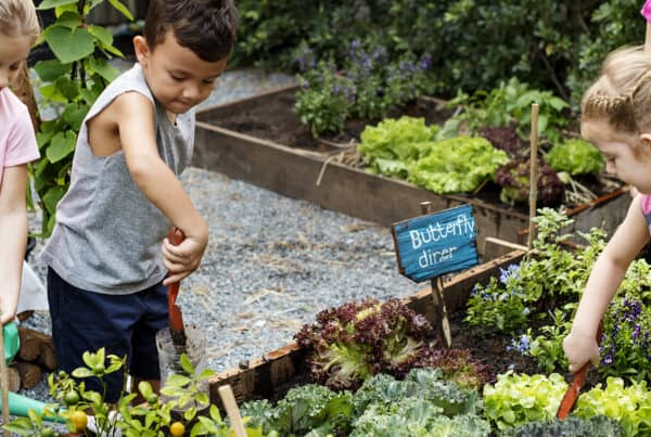 Learning through hands-on activity is a sure-fire way of engaging children and young people, and is one of the winning attributes of the Stephanie Alexander Kitchen Garden Program.