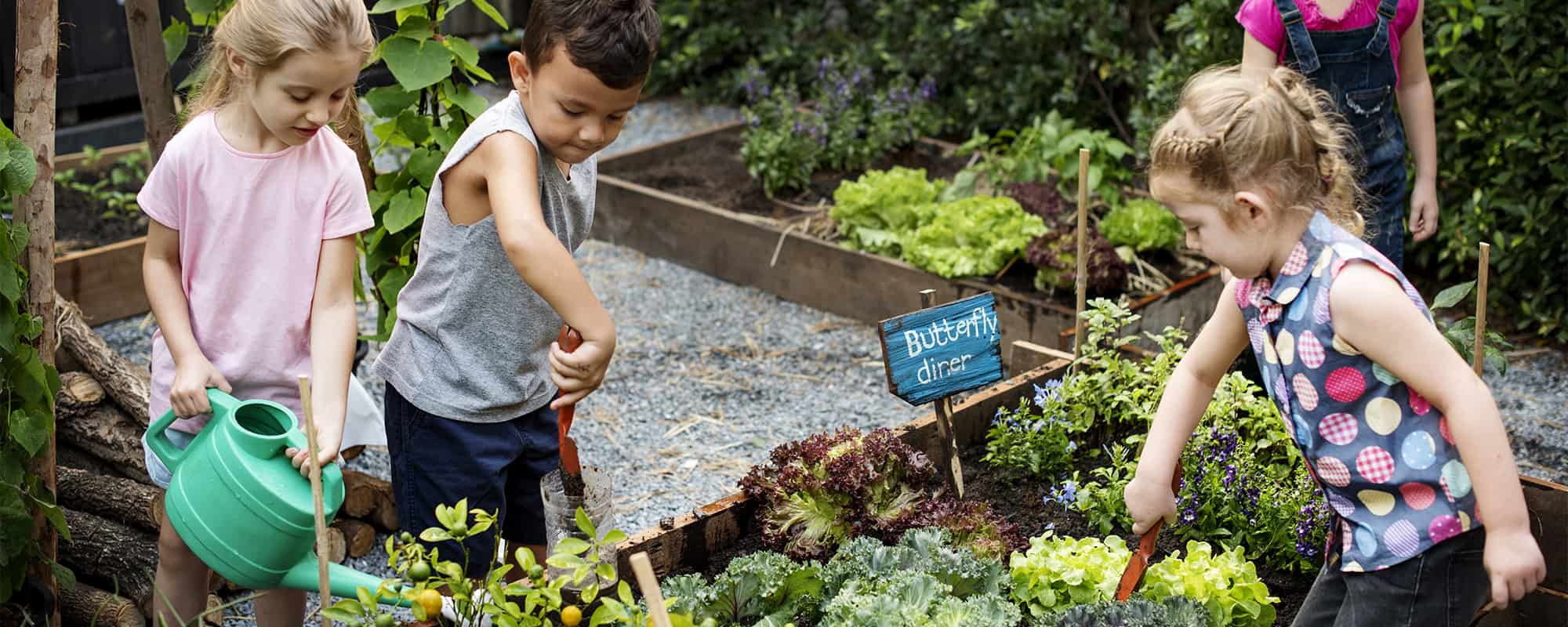 Pleasurable Food Education